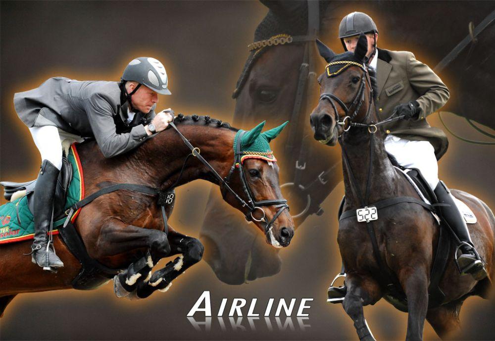 Bilder-Airline-2